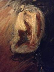 Ear Detail Baby A
